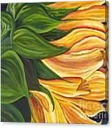 Dancing Sunflower Canvas Print