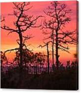 Dancing Trees Into The Fire Canvas Print