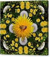 Dandelion Grove Mandala Canvas Print