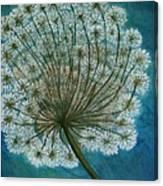 Dandelion Painting     Sold Canvas Print