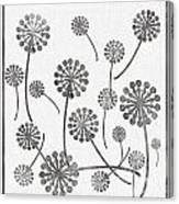 Dandelion Seeds Grey Canvas Print