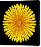 Dandelion V Flower Mandala White Canvas Print