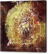 Dandelion Wild Life Canvas Print