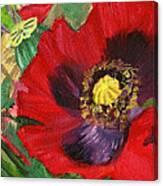 Dangerous Beauty Canvas Print