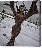 Daphene Sculpture On A Winter Day Canvas Print