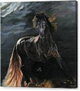 Dappled Horse In Stormy Light Canvas Print
