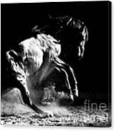 Dark Dance Canvas Print