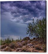 Dark Desert Skies  Canvas Print