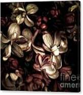Dark Flowers Canvas Print