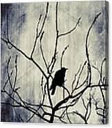 Crow In Dark Lights Canvas Print