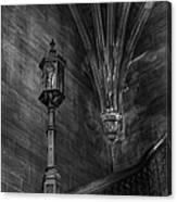 Dark Recesses Canvas Print