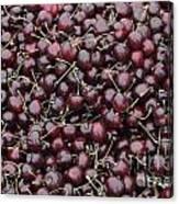 Dark Red Cherries For Sale Canvas Print