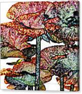 Dark Stroke Poppies Canvas Print