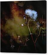 Dark Thistle Canvas Print
