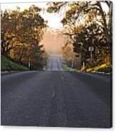 Dark To Light Road Canvas Print