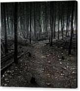 Dark Trail Canvas Print