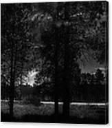 Darkenwalk Canvas Print