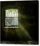 Darkness Revealed - Basement Room Of An Abandoned Asylum Canvas Print