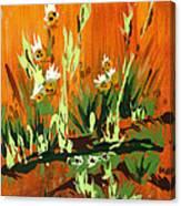 Darlinettas Canvas Print