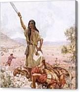 David And Goliath Canvas Print