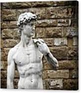David Statue Canvas Print