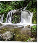 Day 1000 - Lower Forest Glen Falls Canvas Print