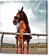 Day At The Track Canvas Print