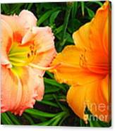 Day Lilies As Happy Friends Canvas Print