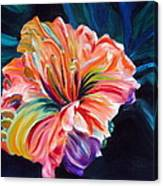 Day Lily Canvas Print