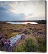 Daybreak Over Connemara Bog Canvas Print