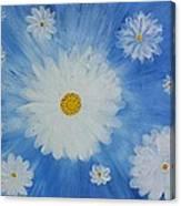 Daydreamin Daisy Canvas Print