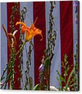 Daylily And Old Glory Canvas Print