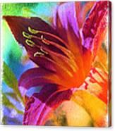 Daylily Delight Canvas Print