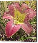 Daylily In Gold Leaf Canvas Print