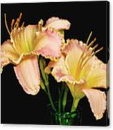 Daylily Pair Canvas Print