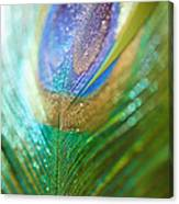 Dazzling Light Canvas Print