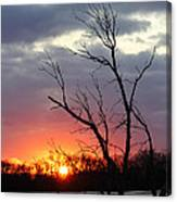 Dead Tree At Sunset Canvas Print