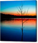 Dead Tree Beauty At Sunset Over Table Rock Lake Canvas Print