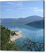 Dead Tree  Blue Ocean Canvas Print