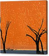 Dead Trees By Red Sand Dunes, Dead Canvas Print