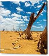 Dead Trees In A Desert Wasteland Canvas Print
