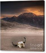 Death In The Desert Canvas Print