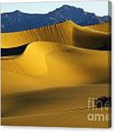 Death Valley California Gold 6 Canvas Print
