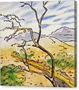 Death Valley- California Sketchbook Project Canvas Print