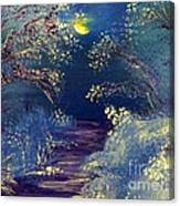 December Night Canvas Print
