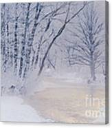 December Riverscape Canvas Print