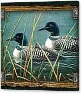 Deco Loons Canvas Print