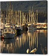 Deep Bay Canvas Print