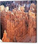 Deep Canyon - Bryce Np Canvas Print