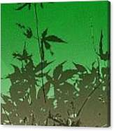 Deep Green Haiku Canvas Print